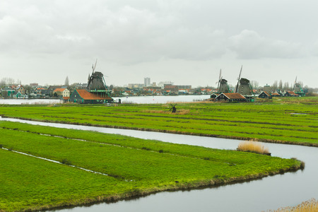 Grey day rural landscape with traditional Dutch windmills and green farm fields
