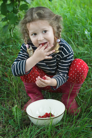 splayed: Little girl wearing red gumboots is taking ripe raspberries from white bowl to her mouth Stock Photo