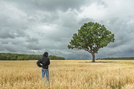 oat field: Back view of boy wearing black hooded sweatshirt and blue jeans looking at stunning summer landscape with dark storm clouds and huge oak tree in oat field