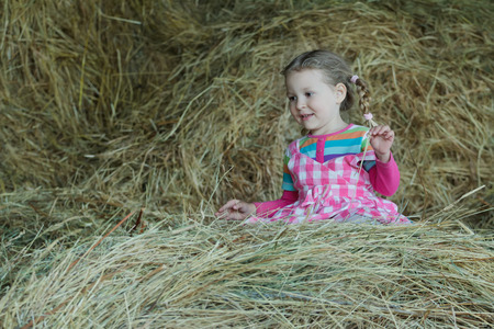 hayloft: Happy preschooler girl is wearing striped and plaid playing in country farm hayloft among dried loose grass hay Stock Photo