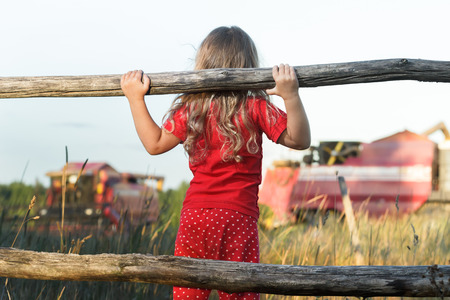 Curious farm girl is wearing polka dot kids pans looking at field with working red combine harvesters Stock Photo