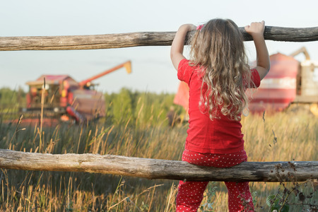 observing: Sitting girl is observing farm field with red working combine harvester