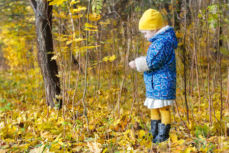 groundcover: Little girl full length profile standing at bright yellow and orange autumn fallen leaves groundcover