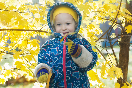 shrubbery: Smiling little girl outdoor portrait at bright yellow autumn shrubbery leaves background
