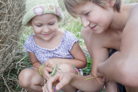 Two siblings are looking at green praying mantis in summer field