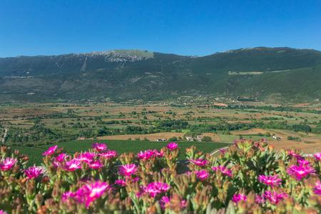 Estate paesaggio rurale della valle verde con le montagne nella regione italiana Abruzzo Archivio Fotografico - 83420710