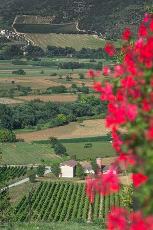 Non-urban green valley landscape with mountains in Italian Abruzzo region