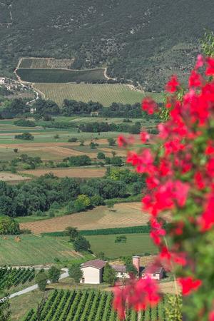 Paesaggio verde valle in fiore con montagne in Abruzzo regione italiana Archivio Fotografico - 83599988