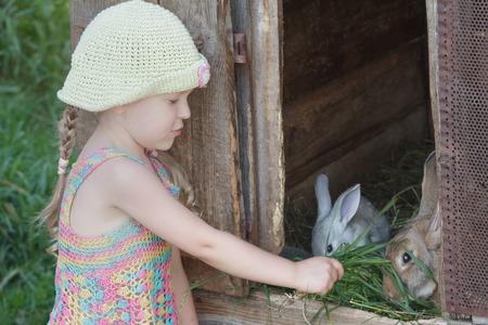 Ragazza che dà erba verde ai conigli domestici all'aperto Archivio Fotografico - 94490973
