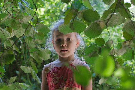 Little girl adventure in common hazel shrubbery hedgerow in summer day
