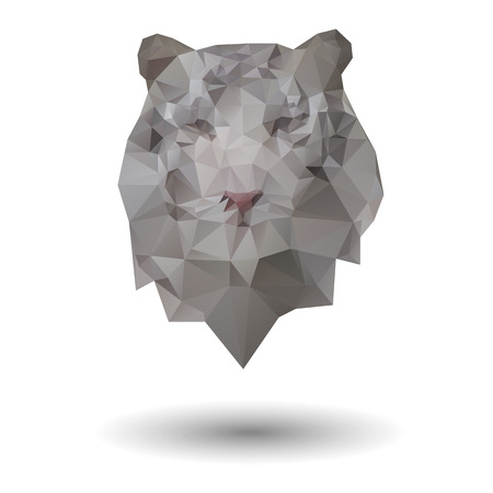 Triangle tiger icon Vector