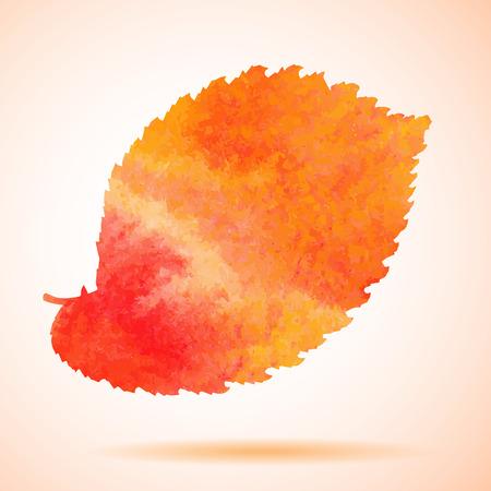 folha: Aquarela pintada alaranjada do vetor da folha da árvore de olmo