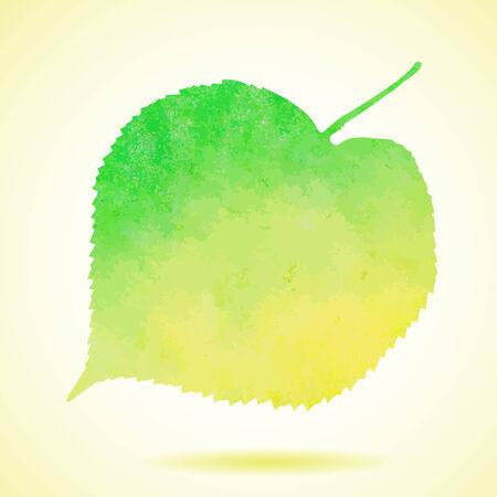 lindeboom: Aquarel linden blad geïsoleerd op wit Stock Illustratie
