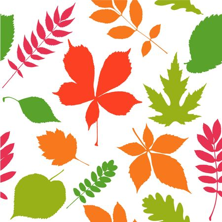 Seamless pattern background. Autumn leaves. Vector