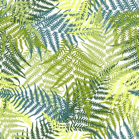シダのシームレスなパターン 写真素材 - 36754862