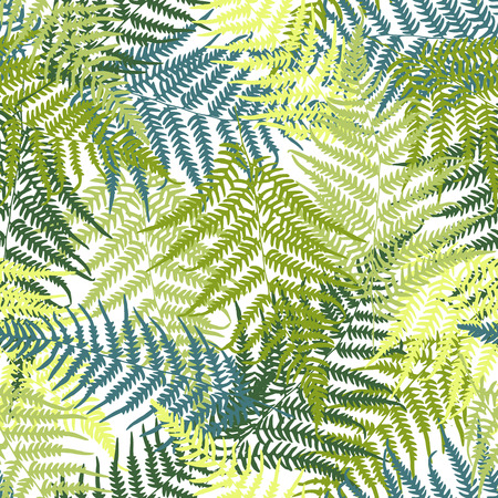 fern leaf: Fern seamless pattern