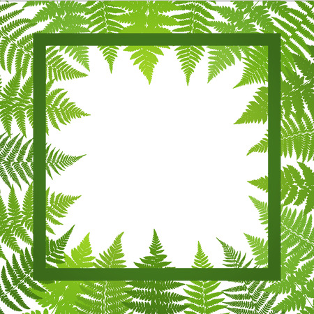frond: Jungle poster. Fern frond background. Vector illustration.