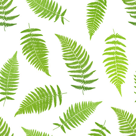 Fern frond silhouettes seamless pattern. Vector illustration Ilustrace