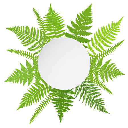 Jungle poster. Fern frond background. Vector illustration.