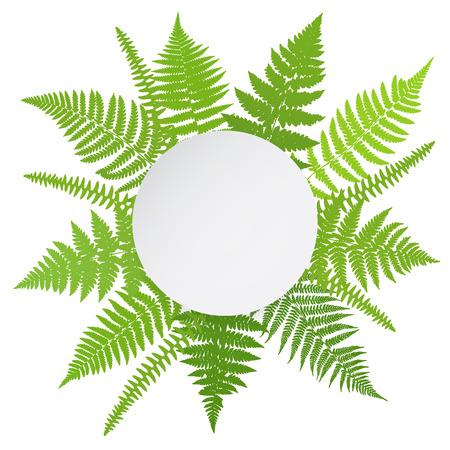fern: Jungle poster. Fern frond background. Vector illustration.