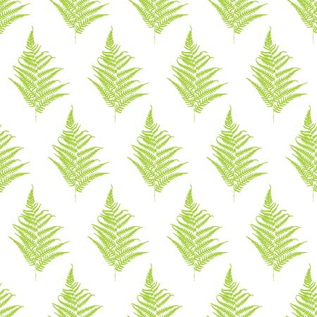 frond: Fern frond silhouettes seamless pattern. Vector illustration Illustration