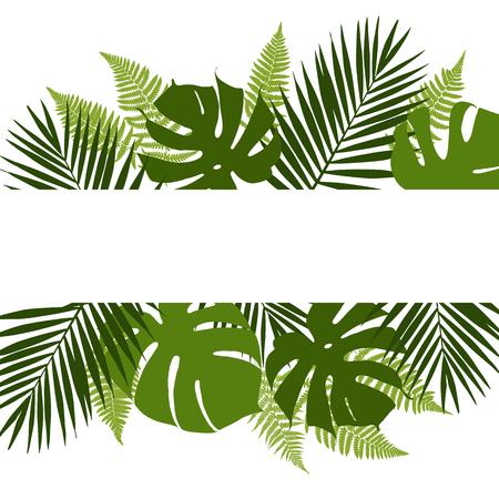 selva: fondo de hojas tropical con la bandera blanca. Palmeras, helechos, monsteras. Ilustraci�n vectorial