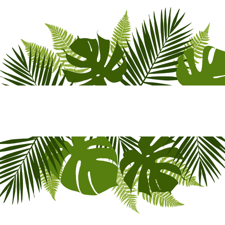 Tropical leaves background with white banner. Palm,ferns,monsteras. Vector illustration
