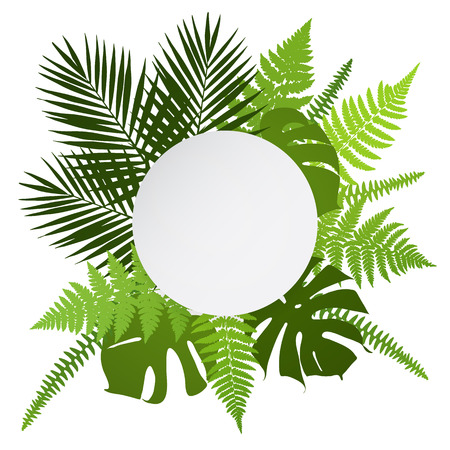 ferns: Tropical leaves background with white round banner. Palm,ferns,monsteras. Vector illustration