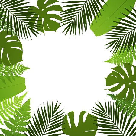 leaves frame: Tropical leaves background. Frame with palm,fern,monstera and banana leaves. Vector illustration Illustration