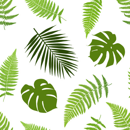 frond: Tropical leaves seamless pattern. Vector illustration.