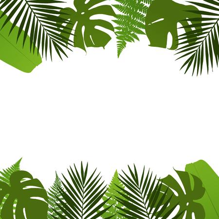 clima tropical: Tropical deja de fondo con hojas de palmera, helechos, monstera y plátano. ilustración vectorial
