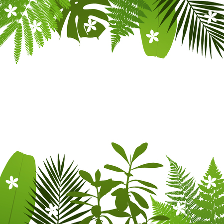 Tropical leaves background with palm,fern,monstera,acacia and banana leaves. Vector illustration  イラスト・ベクター素材