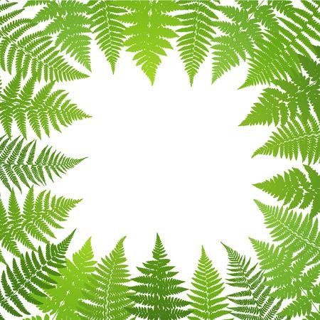 frond: Jungle poster. Fern frond background. Illustration