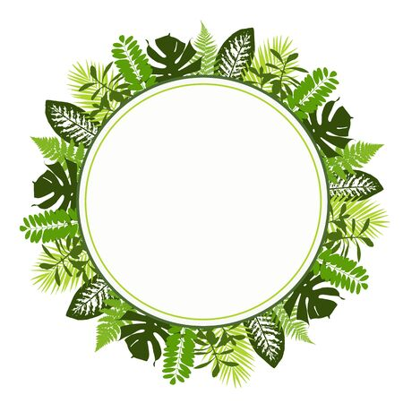 Tropical leaves background with white round banner. Palm,ferns,monsteras. Vector illustration