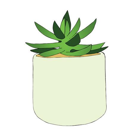 Dibujado a mano flor suculenta en la olla. ilustración vectorial . Foto de archivo - 100131869