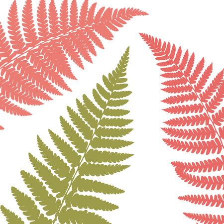 Fern leaf background. Tropical botanical card. Vector illustration Foto de archivo - 126338453