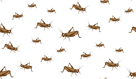 grasshoppers: Vector seamless background of grasshoppers. Chaotic grasshoppers on a white background.