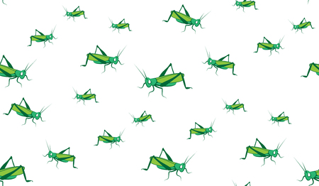 hopper: Vector seamless background of grasshoppers. Chaotic grasshoppers on a white background.