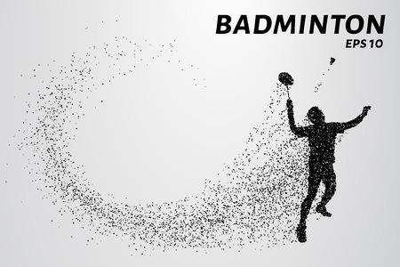 Badminton consists of particles