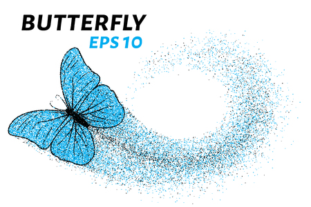 smaller: Butterfly of the particles. Of the smaller circles is a butterfly.