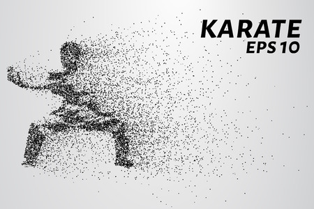 kyokushinkai: Karate of particles. Karate consists of small circles.