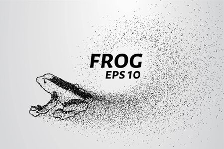part frog: Frog of particles. The frog consists of circles and points. Silhouette frog sway with the wind part.