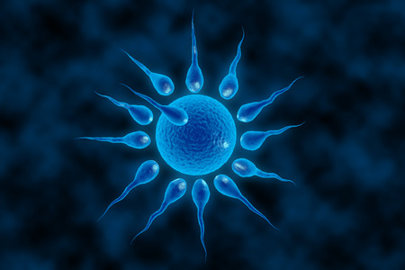 insemination: 3d illustration of sperm and fertile human egg. Fecundation. Insemination concept. In vitro fertilization