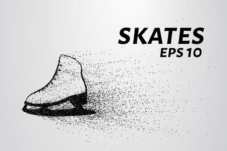 Skates of particles. Skates consists of circles and points. Illustration