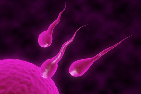 3D render of a group of sperm seeks the egg Stock Photo