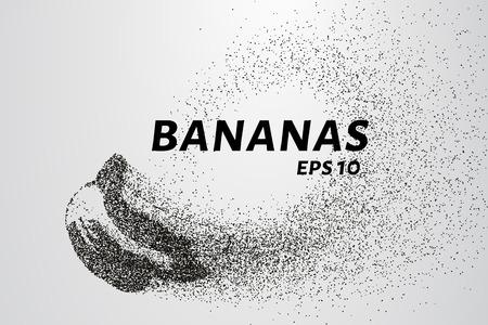 Banana of particles. Bananas consists of small circles and dots. Vector illustration Ilustracja