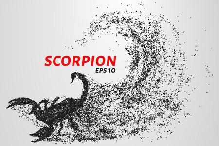 Scorpio of the particles. Scorpio consists of circles and points. Vector illustration. Illusztráció