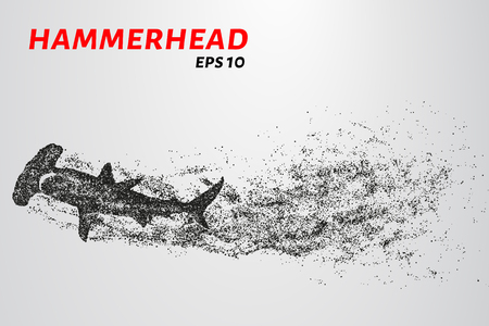 The hammerhead shark from the particles. Fish hammer consists of small circles Illustration