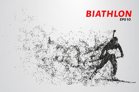 De biatlon bestaat uit deeltjes. De biatlon bestaat uit cirkels en punten. Vector illustratie Stock Illustratie
