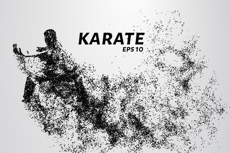 Karate of particles. Karate consists of small circles Illustration